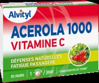Govital Acerola 1000 à Gradignan