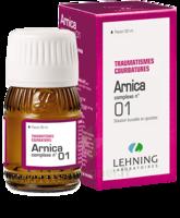 Lehning Arnica Complexe N° 1 Solution Buvable En Gouttes Fl/30ml à Gradignan