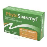 Phytospasmyl Caps B/60 à Gradignan