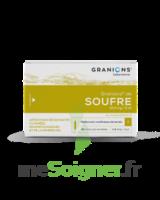 Granions De Soufre 19,5 Mg/2 Ml S Buv 30amp/2ml à Gradignan