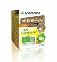 Arkoroyal 100% Gelée royale bio Gelée Pot/40g à Gradignan