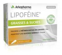 Lipofeine Graisse Et Sucres Gélules B/60 à Gradignan