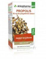 Arkogélules Propolis Bio Gélules Fl/45 à Gradignan