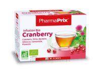 Infusion BIO Cranberry à Gradignan