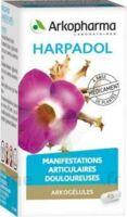 Arkogelules Harpagophyton Gélules Fl/150 à Gradignan