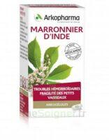 ARKOGELULES MARRONNIER D'INDE, gélule à Gradignan