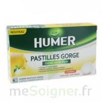 HUMER PASTILLE GORGE à l'etrait sec de thym 24 pastilles à Gradignan