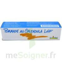CALENDULA LHF POM T/20G à Gradignan