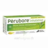 PERUBORE Caps inhalation par vapeur inhalation Plq/15 à Gradignan