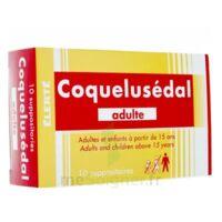 COQUELUSEDAL ADULTES, suppositoire à Gradignan