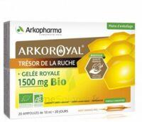 Arkoroyal Gelée royale bio 1500 mg Solution buvable 20 Ampoules/10ml à Gradignan