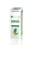 Huile essentielle Bio Ravintsara à Gradignan