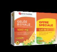 Forte Pharma Gelée Royale 1000 Mg Solution Buvable 2*b/20 Ampoules/10ml à Gradignan