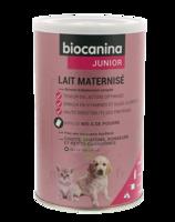 Biocanina Lait Poudre Maternisé B/400g à Gradignan