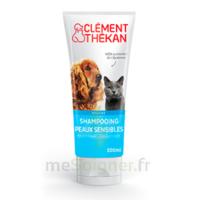 Clément Thékan Shampooing Peaux Sensibles T/200ml à Gradignan