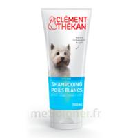 Clément Thékan Shampooing Poils Blancs T/200ml à Gradignan