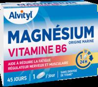 Govital Magnésium Vitamine B6 Comprimés B/45 à Gradignan