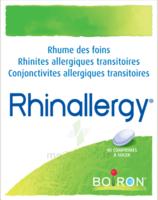 Boiron Rhinallergy Comprimés B/40 à Gradignan