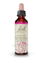 Fleurs De Bach® Original Star Of Bethlehem - 20 Ml à Gradignan