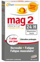 Mag 2 24h Comprimes B/45 à Gradignan