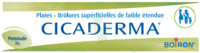 Boiron Cicaderma Pommade à Gradignan