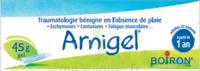 Boiron Arnigel Gel T/45g à Gradignan
